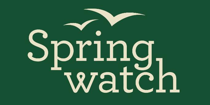 Jigsaw24 helps Springwatch thrive in the wild!